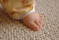 Sofa & Carpet Cleaning Devon