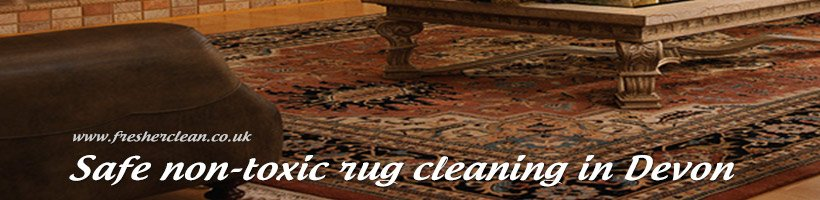 Rug Cleaning Plymouth Exeter