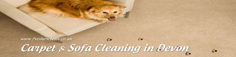 Carpet & Upholstery Cleaning Budleigh Salterton