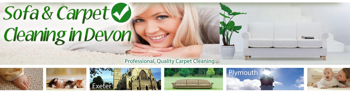Upholstery & Carpet Cleaning